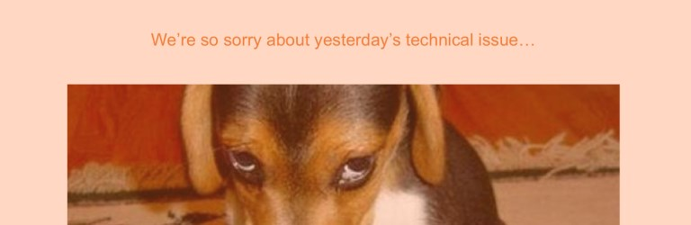 Sad puppy in a Magento 2 webinar