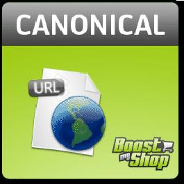 Canonical URL SEO