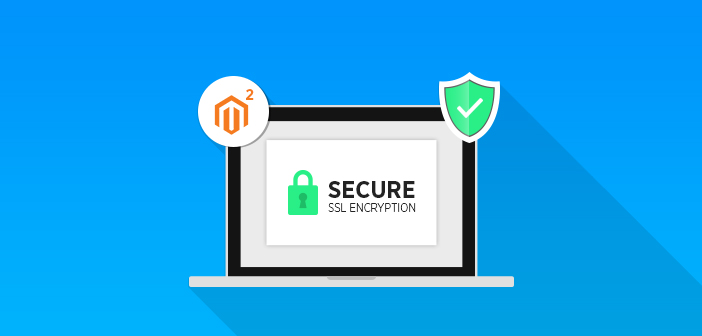 enable ssl in Magento 2